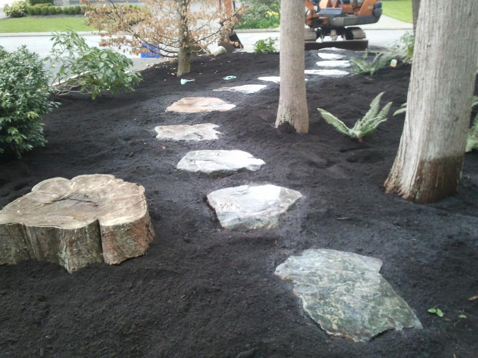 rock path 1