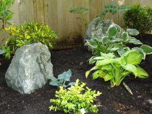 garden maintenance Chilliwack, BC